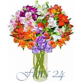 Доставка цветов в ивано-франковск барнаул заказ цветов доставка